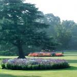greenwich flower garden